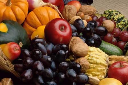 LXIV Giornata del Ringraziamento per i frutti della terra